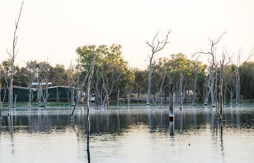 boshack outback perth farmstay
