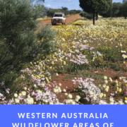 Western Australia Wildflower Areas of Interest