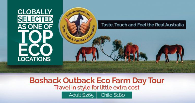 Boshack Aussie Outback Seasonal Specials