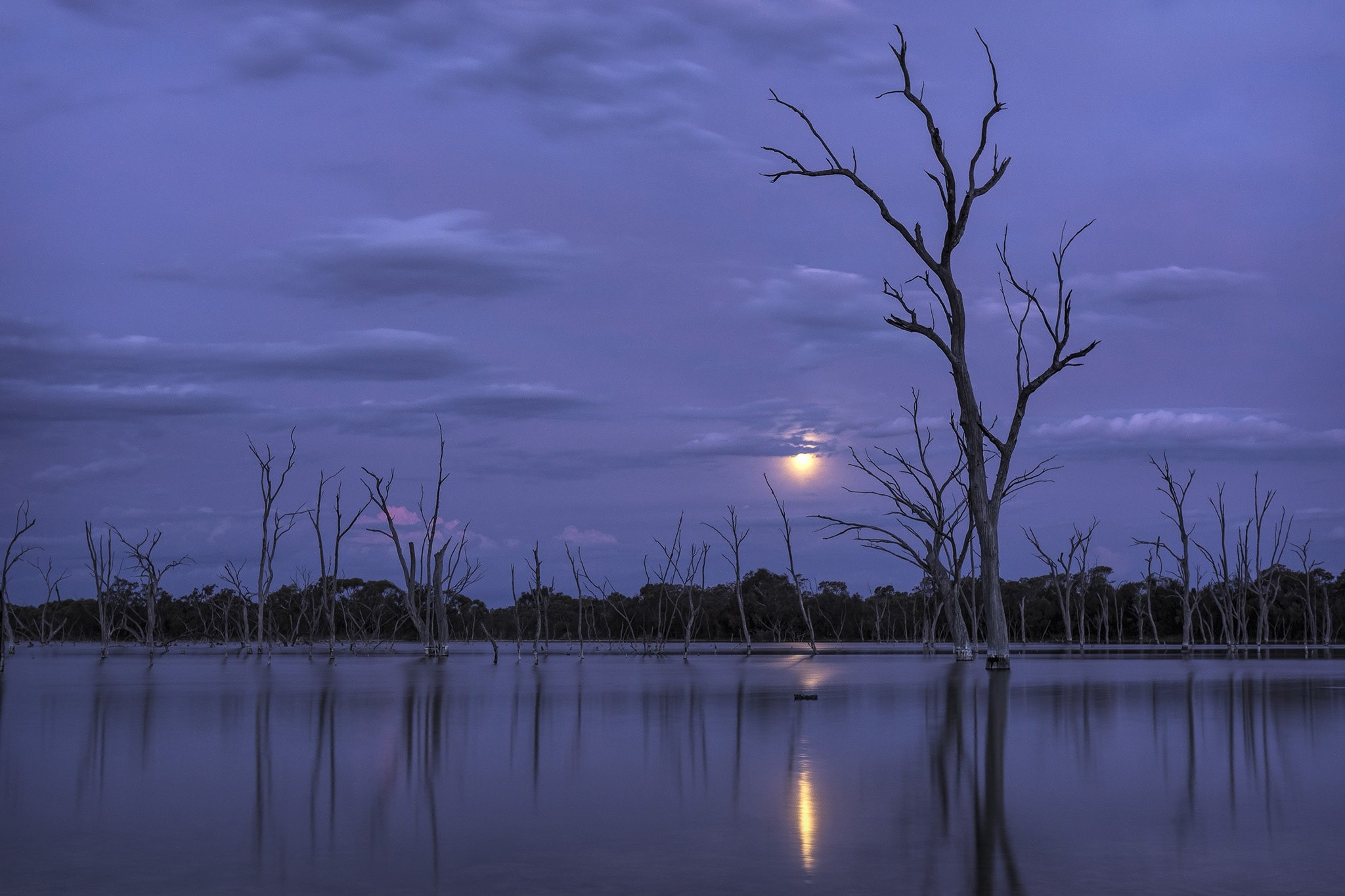 Boshack-Lake-in-Moonlight-4392-2-Annie-Lee-Photography-Design